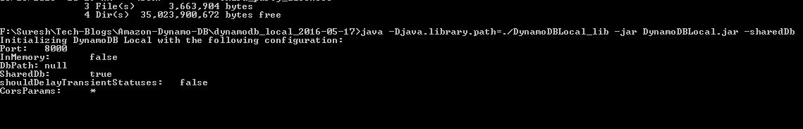 How to use Amazon DynamoDB for Java Enterprise Development
